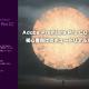 Adobe Premiere Pro CC 2017 初心者向け編集講座