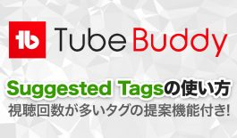 TubeBuddy Suggested Tagsの使い方