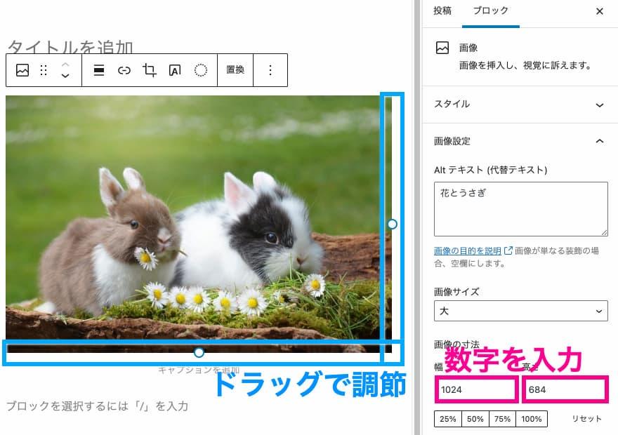 エディタ画面と右メニューバーで画像サイズを調節できる